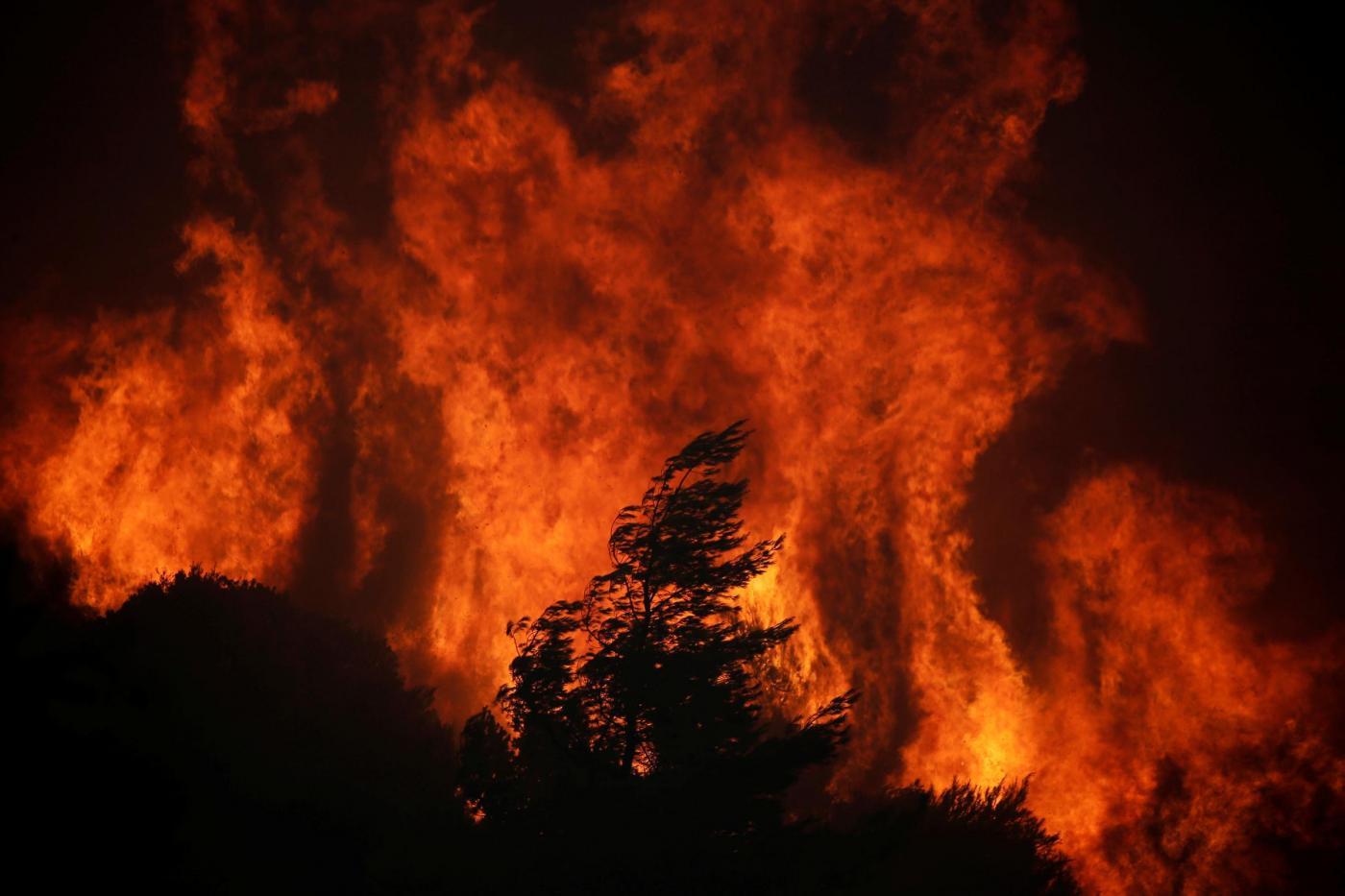 Amazzonia: è record di incendi - America Latina