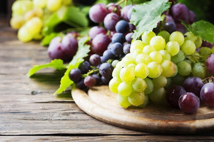Dalla puglia arriva il premio a migliore vigneto di uva da - Uva da tavola puglia ...
