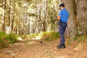 Liberi di volare: aree protette del cosentino protagoniste nel rilascio di animali selvatici