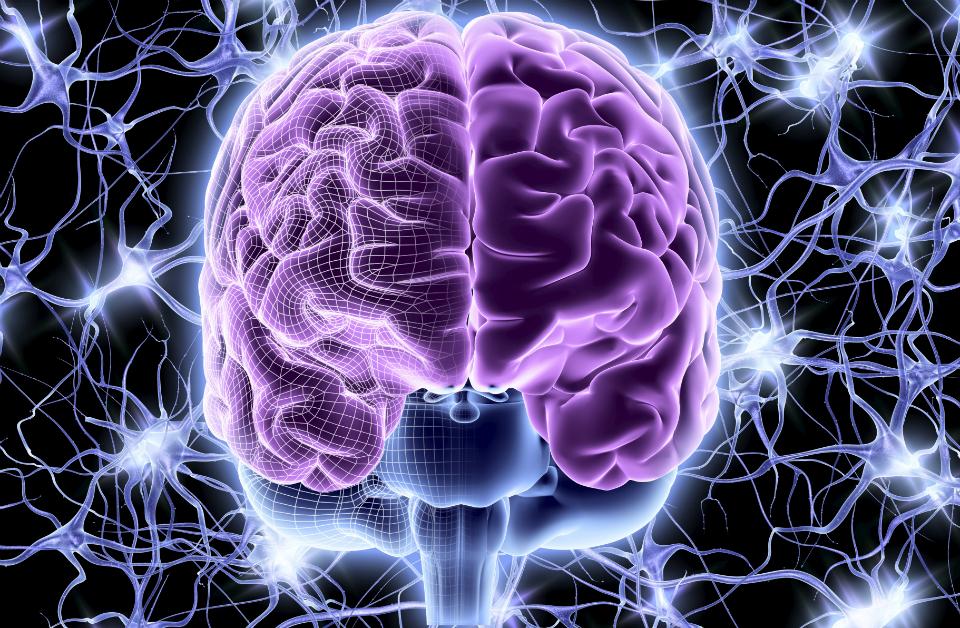 Sì a registro sclerosi multipla e percorsi omogenei cura