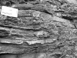 L'Uomo di Neanderthal viveva a Roccastrada: la conferma dagli scavi dell'Università di Siena