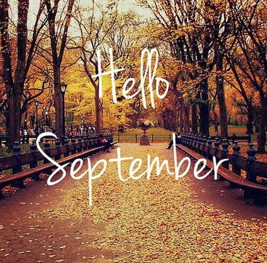 Perch settembre si chiama cos ecco da cosa deriva for Cosa si semina a settembre