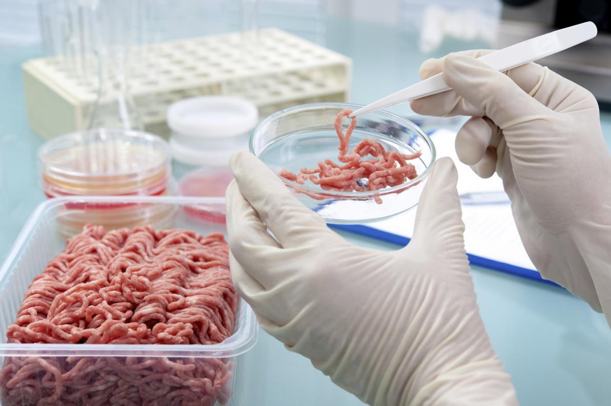 Allarme mondiale, carne contaminata da listeria