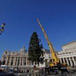 Vaticano: l'arrivo dell'albero di Natale [GALLERY]