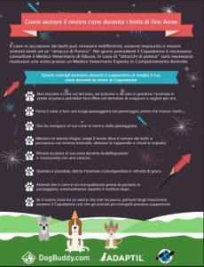 Botti di Capodanno: il vademecum per aiutare il nostro cane a non avere paura