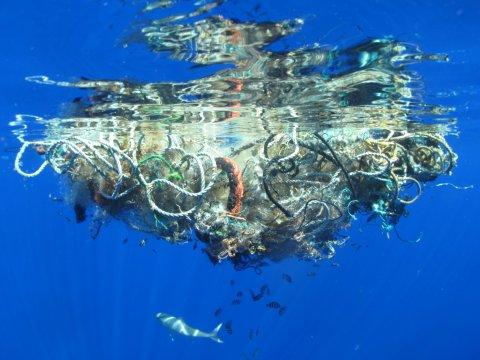 ammassi plastica oceano