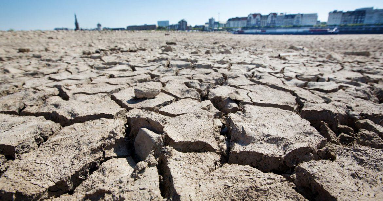 siccità germania fiume reno 4 novembre 2018