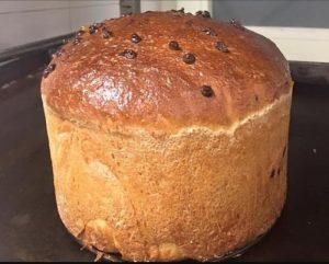 Panseta: il primo panettone al mondo fatto con farina prodotta dal baco da seta