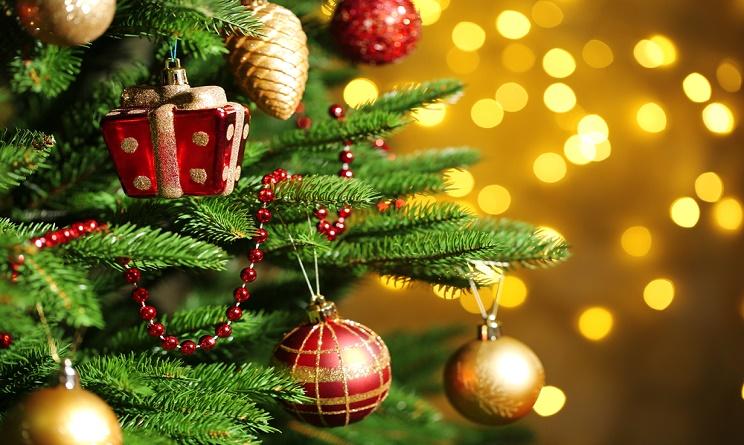 Albero Di Natale 8 Dicembre.Natale Alberi Veri In 3 6 Milioni Di Case 33 Euro Di Spesa Meteoweb