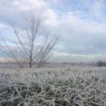 Freddo polare in tutt'Italia, temperature pazzesche: incredibile ghiacciaia in Piemonte con -14°C in pianura [DATI]