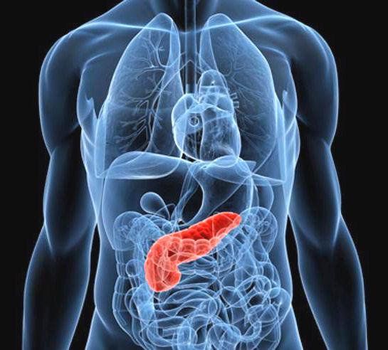 Tumore del pancreas: olaparib raddoppia tempo sopravvivenza
