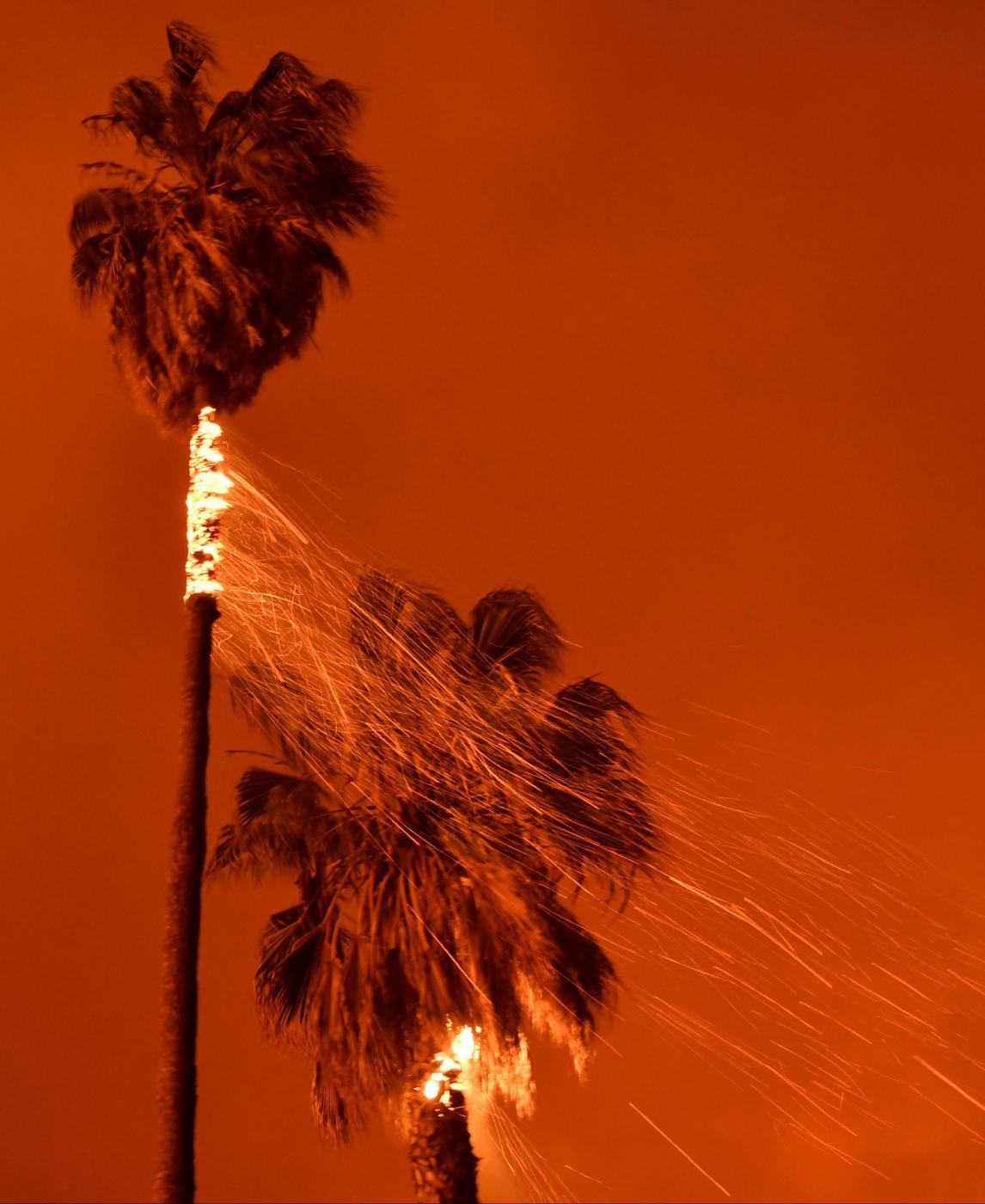 Vasti incendi nel sud della california stato di emergenza for Cabine romantiche nel sud della california