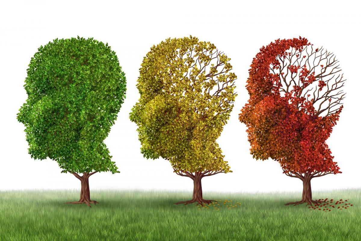 Alzheimer, scoperto nuovo farmaco: ferma il declino. ALZHEIMER NUOVA CURA