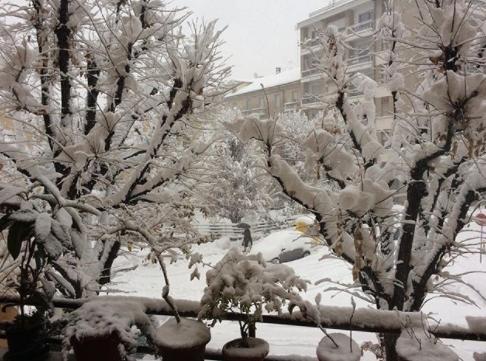 neve cuneo 2 dicembre 2017 (1)