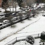 Meteo Piemonte: fitta nevicata nella notte a Torino, la città si risveglia imbiancata [GALLERY]