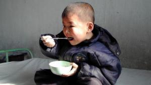 malnutrizione corea del nord