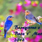 Buongiorno e Buon 1° Marzo 2018: ecco le immagini più belle da condividere oggi su Facebook e WhatsApp [GALLERY]