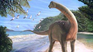 Mansourasaurus Shahinae, dinosauro Egitto