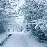 Maltempo Piemonte, ancora pioggia e neve: il Cuneese il più colpito