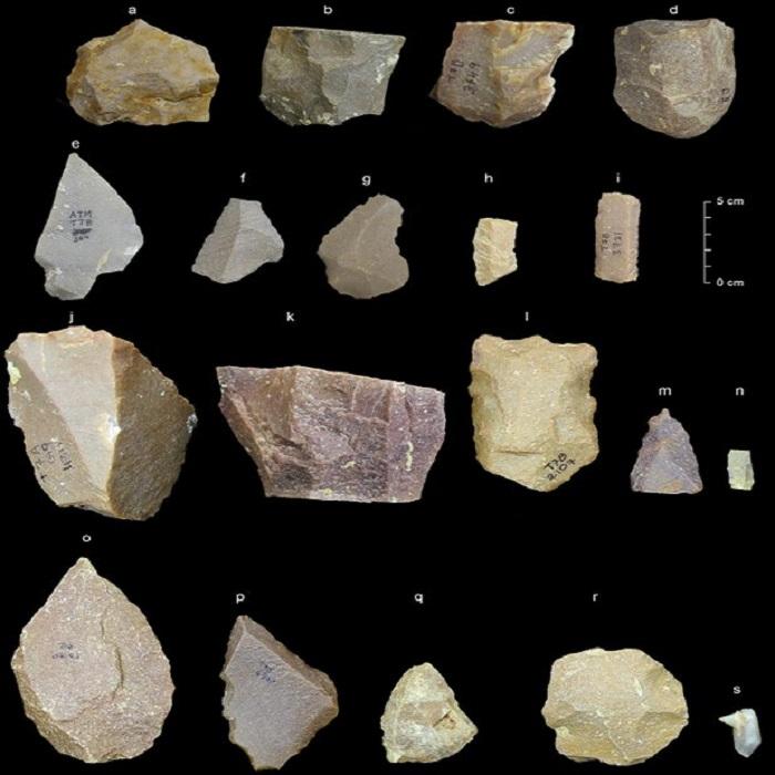 strumenti di pietra India Homo Sapiens