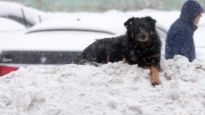 tempesta di neve a Mosca