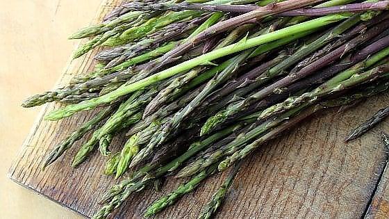 Asparagi selvatici propriet e come sfruttarli in cucina for Cucinare asparagi