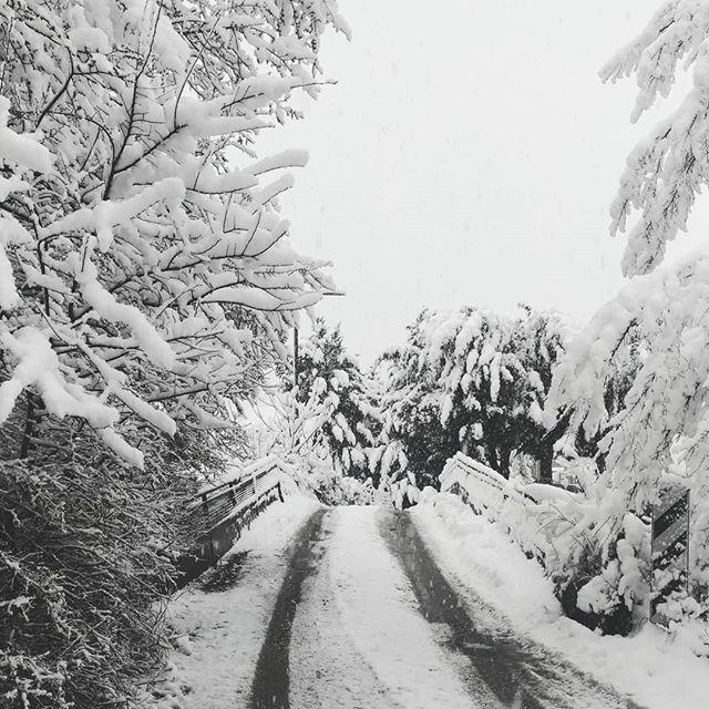Neve Potenza