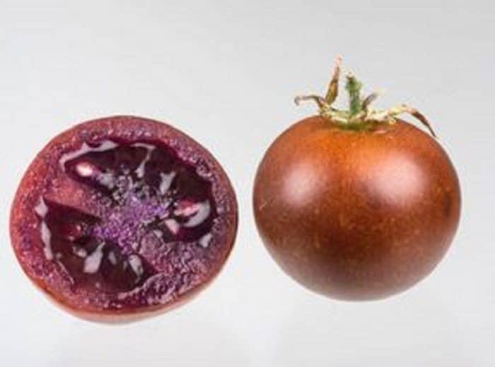 pomodoro bronzeo