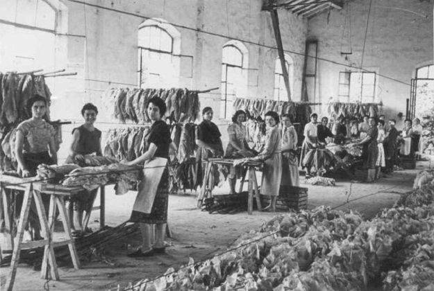 Festa della donna la leggenda del rogo della cotton for Piani di casa rambler con seminterrato sciopero