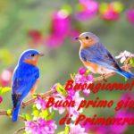 Equinozio 2019, Buongiorno e Buon Primo Giorno di Primavera! Ecco IMMAGINI e GIF da condividere oggi