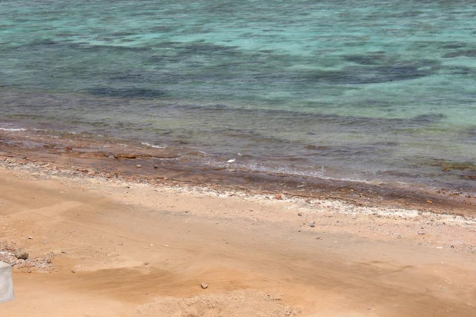 parto mare Mar Rosso