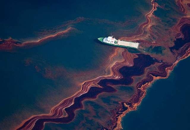 petrolio mare batteri