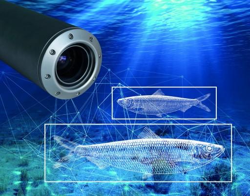 synapticam telecamera intelligente