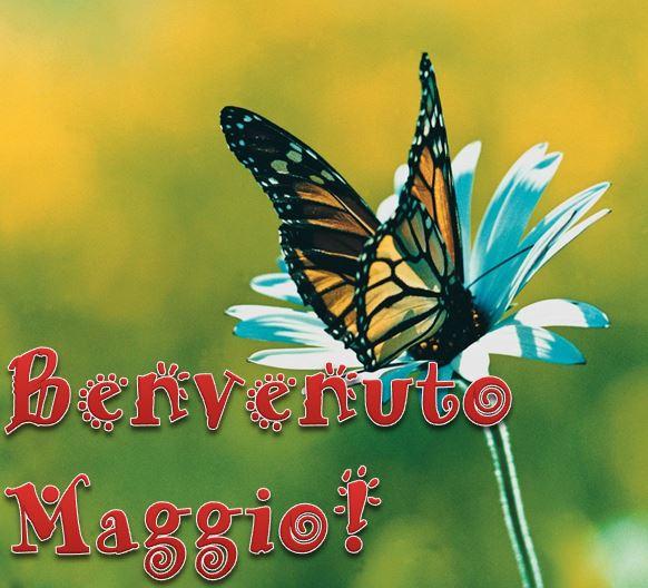benvenuto Maggio
