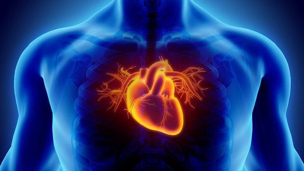 Тибетская медицина от гипертонии - Farmaci per il cuore per lipertensione