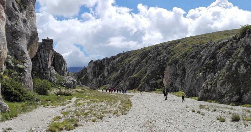 Abruzzo piccolo - Tibet
