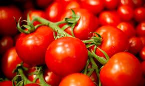 Pomodori: un tripudio di gusto e virtù benefiche