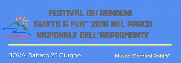 Festival dei Rondoni