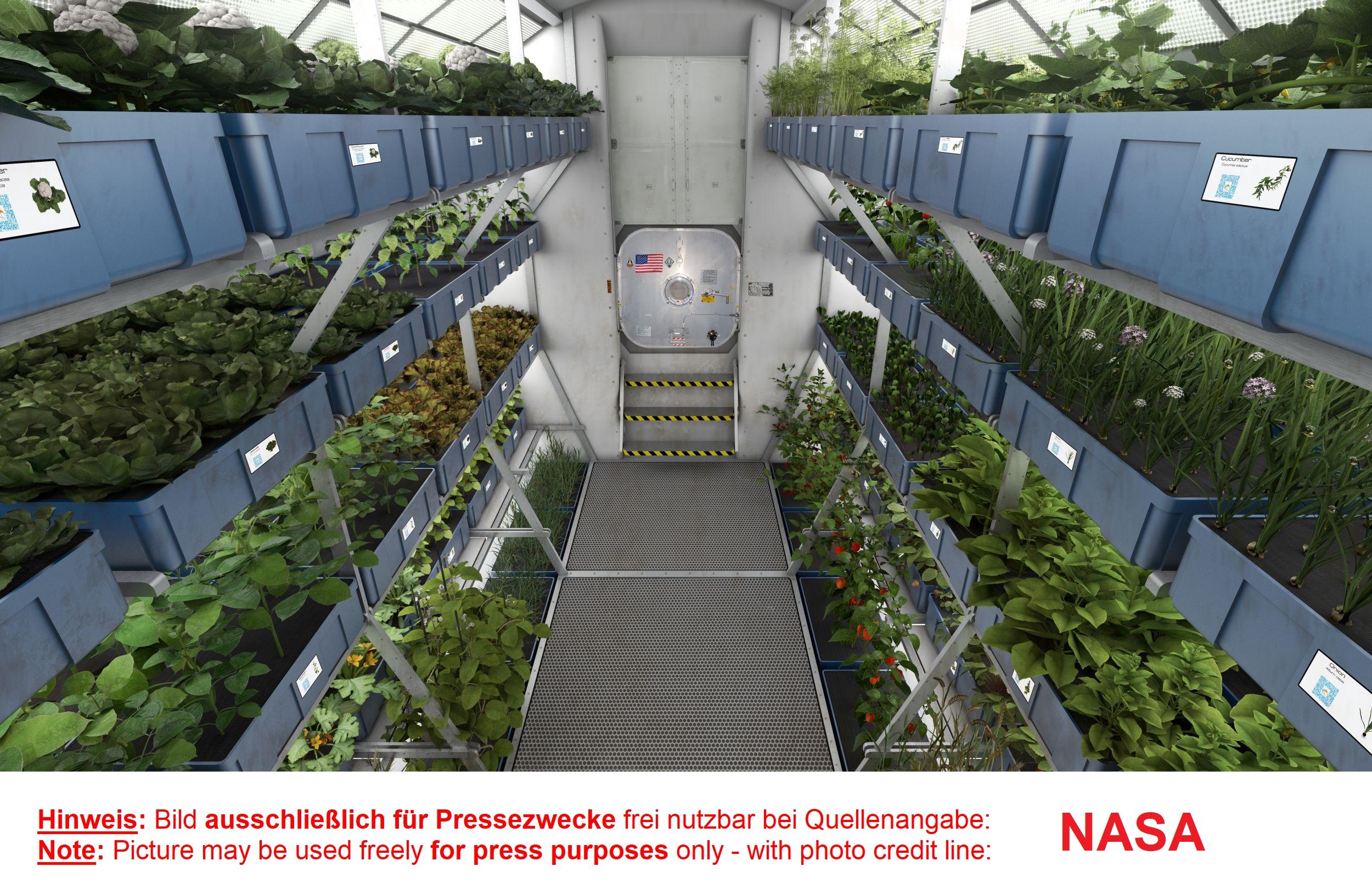 Produzione alimentare nello spazio illuminazione per orticoltura