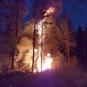 incendi svezia