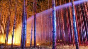 incendio Treuenbrietzen, Germania (1)