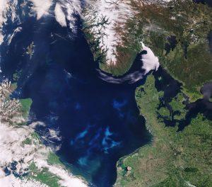 fioritura mare del nord