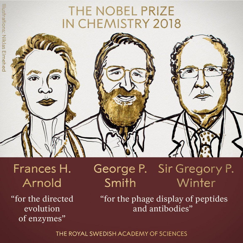 premio nobel chimica