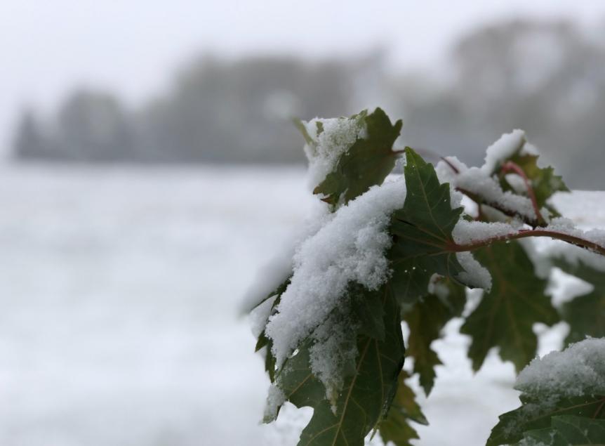 tempesta neve usa