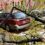 Maltempo USA: 8 morti nell'Est, bufera di neve su New York [GALLERY]