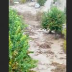 Allerta Meteo Reggio Calabria, nubifragi su tutta la Piana di Gioia Tauro: strade e stazioni allagate e torrenti in piena, situazione critica [FOTO e VIDEO LIVE]