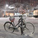 E' arrivata la prima neve a New York [GALLERY]