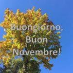 Buongiorno e Buon Novembre 2020: le IMMAGINI più belle, i proverbi più famosi, tante curiosità sul mese e sull'Estate di San Martino