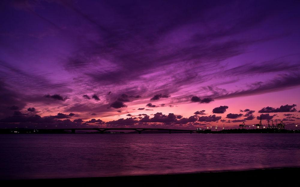 cielo viola