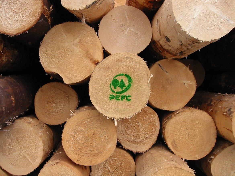 PEFC comunità forestali